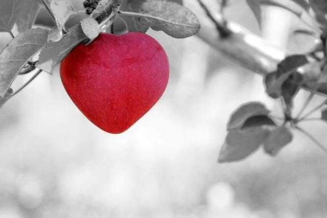 Mulheres e o coração